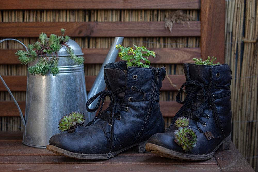 Stiefel bepflanzen